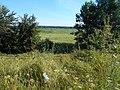 Smilyans'kyi district, Cherkas'ka oblast, Ukraine - panoramio (104).jpg