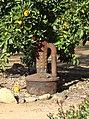 Smudge Pot, Redlands, CA 1-2012 (6803054495).jpg