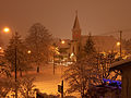 Snow nvan.jpg