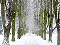 Snowy Avenue to Work - geograph.org.uk - 1155338.jpg