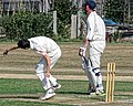 Southwater CC v. Chichester Priory Park CC at Southwater, West Sussex, England 008.jpg