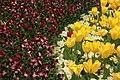 Spring in London (7113805437).jpg
