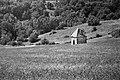 St-Julien tonne 0707B NB.jpg