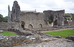 St Dogmaels - Another view of the abbey ruins