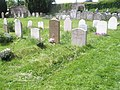 St Mary and St Gabriel Churchyard, South Harting - geograph.org.uk - 1319765.jpg