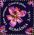 Stamps of Romania, 2009-20.jpg