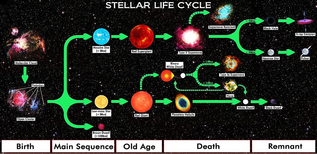 Star Life Cycle Chart