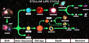 Star Life Cycle Chart.jpg