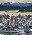Statter Fish Armada 32.jpg