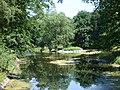 Staw w parku Szczytnickim (Pond in Szczytnicki Park) - panoramio.jpg