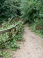 Steep path down to the towpath - geograph.org.uk - 240301.jpg