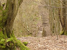 Steps in Glover's Wood - geograph.org.uk - 1752409.jpg