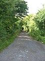 Stewkley Lane Bridleway, Nr Dean Farm, Stewkley - geograph.org.uk - 889705.jpg