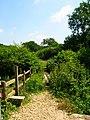 Stile and Footbridge - geograph.org.uk - 844272.jpg