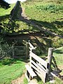Stile and Path Above Clough Farm - geograph.org.uk - 936516.jpg