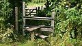 Stile and gate on footpath near Fernhurst - geograph.org.uk - 1409607.jpg