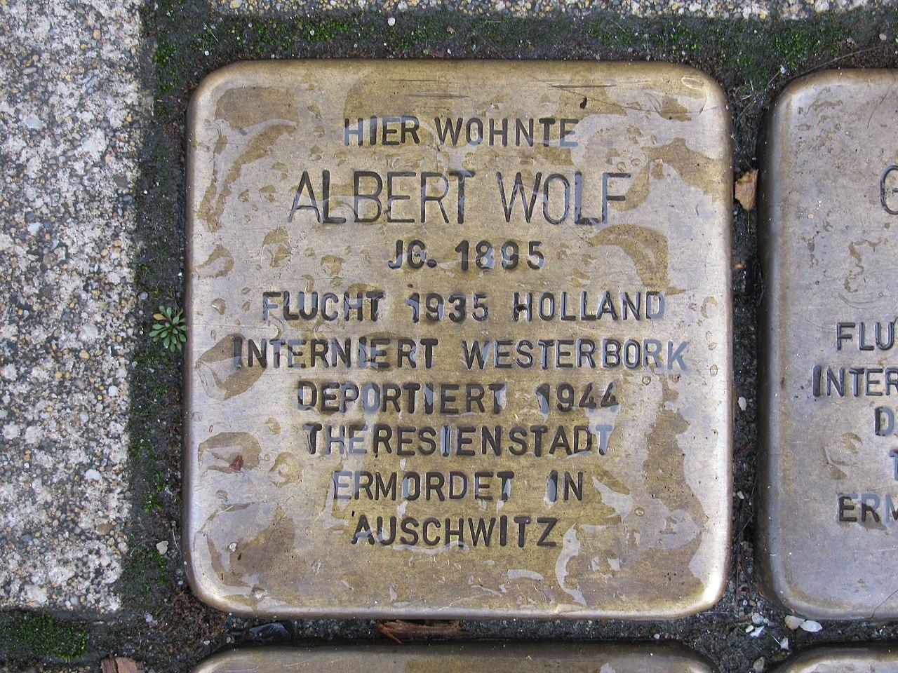 Stolperstein Albert Wolf, 1, Werner-Senger-Straße 19, Limburg an der Lahn, Landkreis Limburg-Weilburg.jpg
