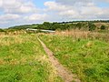 Stour Valley Walk - geograph.org.uk - 535131.jpg