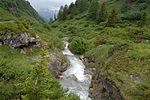 Alpine stream above Binn