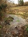 Stream below Larcombe Quarry - geograph.org.uk - 1159410.jpg
