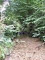 Stream near Crooksball - geograph.org.uk - 917659.jpg