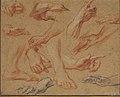 Studies of Hands and Feet MET 06.1042.11.jpg
