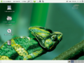 Suse 10.0 Gnome.png