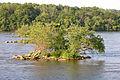 Susquehanna River Islet 3264px.jpg