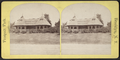 Swiss thatched cottage, from Robert N. Dennis collection of stereoscopic views.png