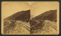 Switch Black Hawk, from Robert N. Dennis collection of stereoscopic views.png