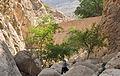 TAG-Aab Gerash,Fars,Iran-Photo by Hamed Abdullahi.jpg