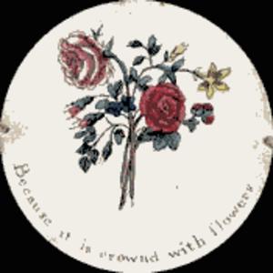 Thaumatrope - Image: Taumatropio fiori e vaso, 1825 Frame 1
