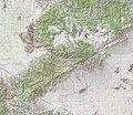 Tehachapi Mountains – topographic map.jpg