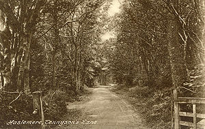 Blackdown, West Sussex - Tennyson's Lane c. 1900. The gate marks the Surrey/Sussex border, and was a favourite destination for Lord Tennyson's walks