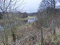 The River Tweed - geograph.org.uk - 734935.jpg