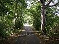 The lane to Island View, Dewsbury - geograph.org.uk - 196263.jpg