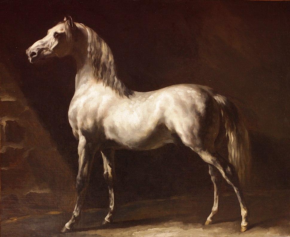 Theodore-Gericault--cheval-arabe-gris-blanc-rouen