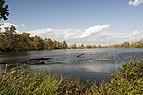 Three Creeks - Heron Pond 4.jpg