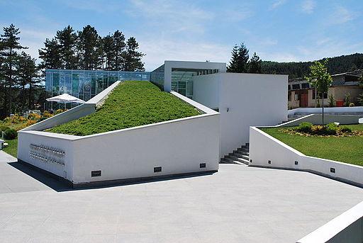 Todor Proeski Memorial House 01