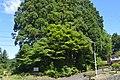 Toei town Omori Kofun ac.jpg