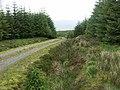 Track down Bealach nan Cabrach - geograph.org.uk - 20577.jpg