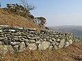Traditional wall - geograph.org.uk - 1235588.jpg