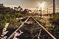 Trainrail in Macaé.jpg