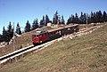 Trains du Schynige Platte (Suisse) (4437798056).jpg
