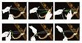 Trames teixint borles (26790005525).jpg
