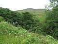 Tullynasiddagh Townland - geograph.org.uk - 884288.jpg