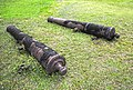 Two canons on the grass inside Saint Geronimo's Castle at Portobelo.jpg