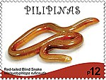 Typhlops ruficaudus 2017 stamp of the Philippines.jpg