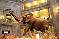 USA-National Museum of Natural History.JPG