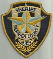 USA - MICHIGAN -Berien County Sheriff.jpg